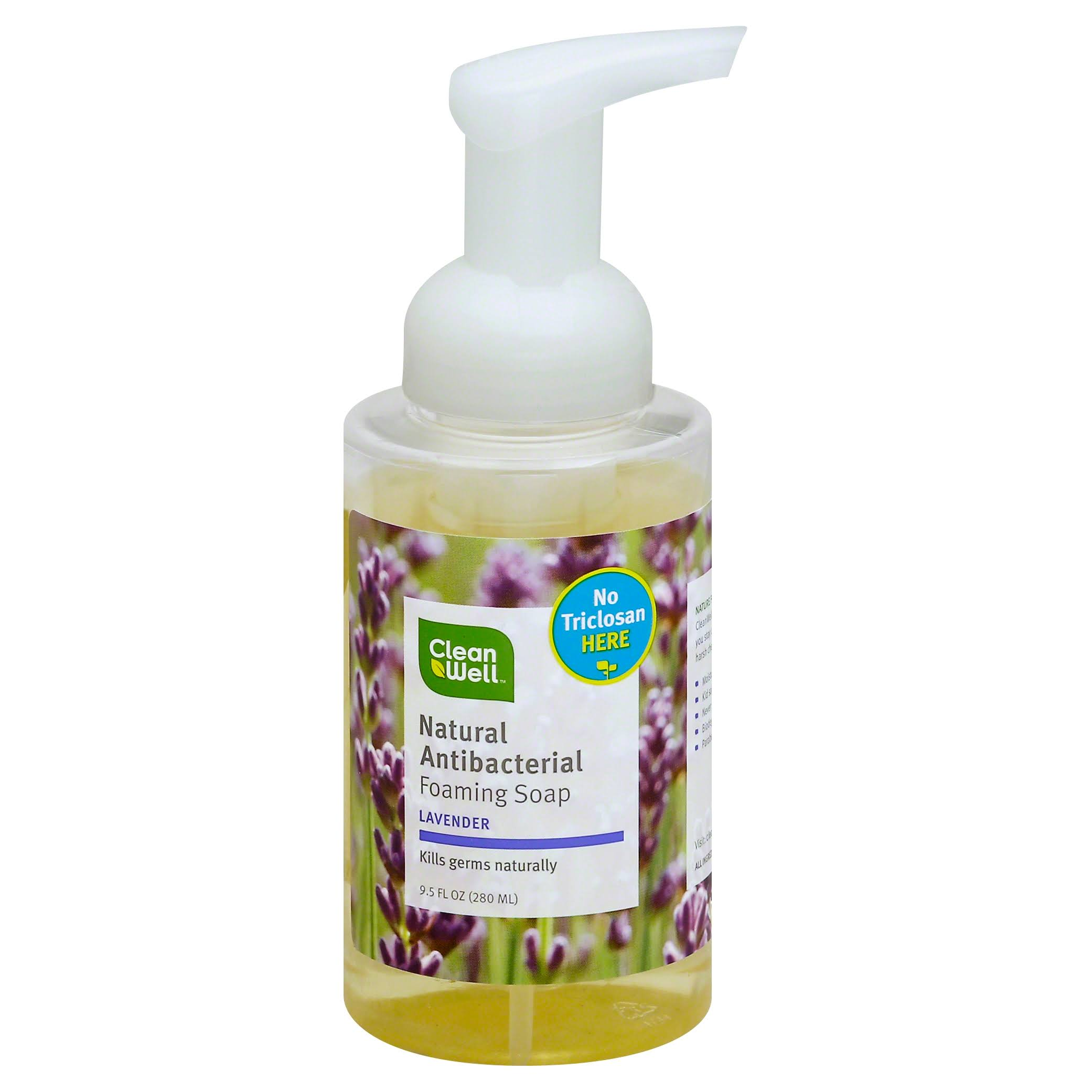 Clean Well All-Natural Antibacterial Foaming Hand Wash