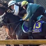 ホープフルステークス, 競馬の競走格付け, 競走馬の血統, 有馬記念, 中央競馬, レイデオロ, 重賞