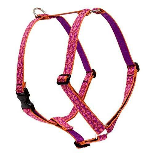 LupinePet Originals 1 Alpen Glow 20-32 Roman Harness for Medium Dogs
