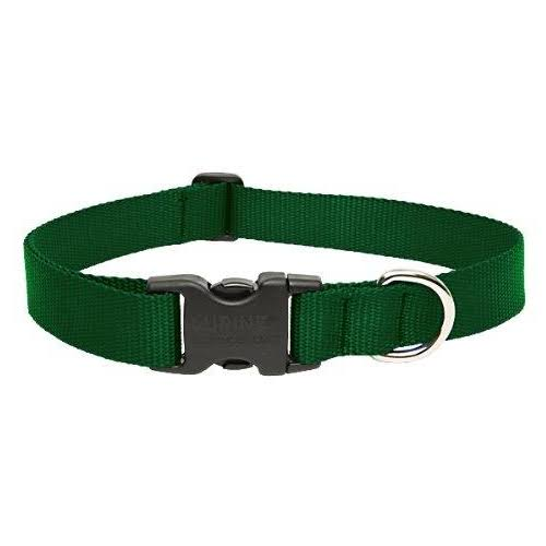 LupinePet 1 Inch Adjustable Dog Collar