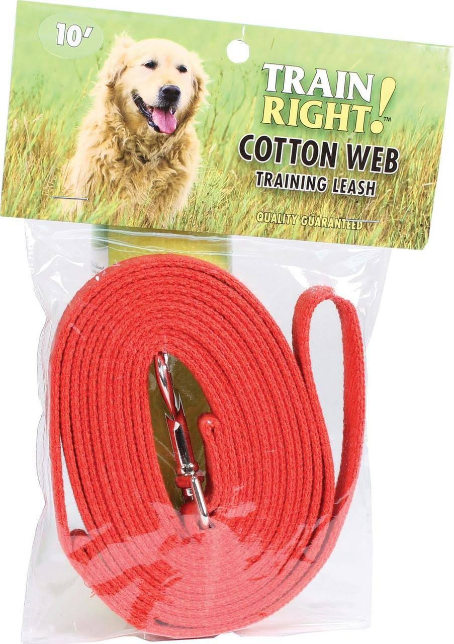 Coastal Cotton Web Training Dog Leash - Red, 10'