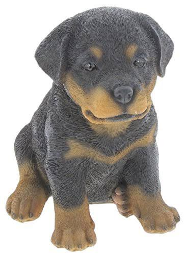 Nature's Gallery Pet Pals (Rottweiler Puppy)