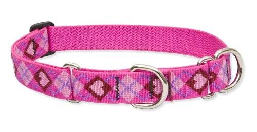"Lupine Martingale Combo Collars Lifetime Guaranteed - 19-27"" x 1"", Puppy Love"