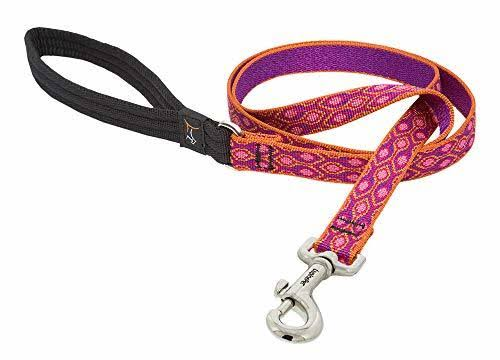 "LupinePet Originals Alpen Glow Leash 3/4"" x 6'"