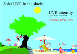 Narrow Band Uvb Lamp Uk by Uvr Sun Lamps Pigmentation And Vitamin D Photochemical