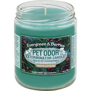 Pet Odor Exterminator Candle - Honeydew Lemon, 13oz Jar