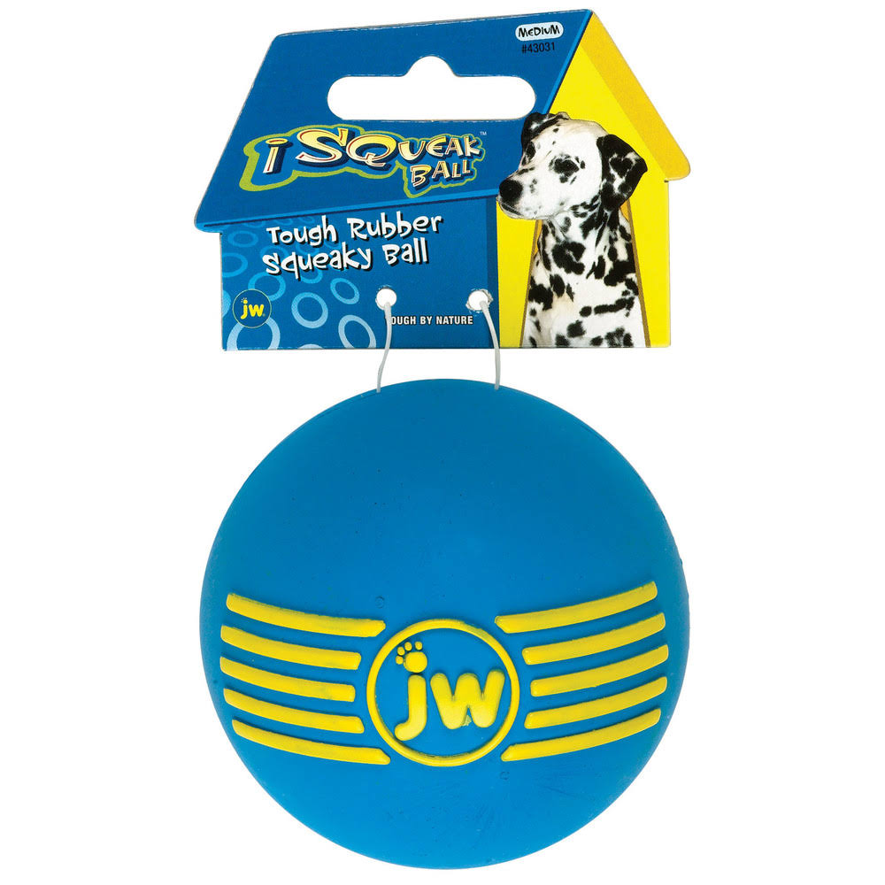 Jw Pet Company Isqueak Ball Rubber Dog Toy - Medium