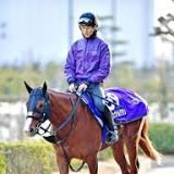 有馬記念, シュヴァルグラン, 競馬の競走格付け, 角馬場, 日本, 栗東トレーニングセンター