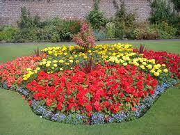 Flowers For Flower Beds by Preschool Bulletin Board Ideas Annual Flower Garden Designs Bed