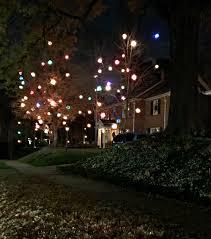 Pea Ridge Christmas Tree Farm by Christmas Chatfield Court