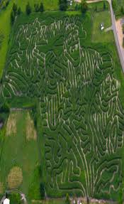 Stillwater Pumpkin Patch by Find Pick Your Own Pumpkin Patches In Minnesota Corn Mazes And