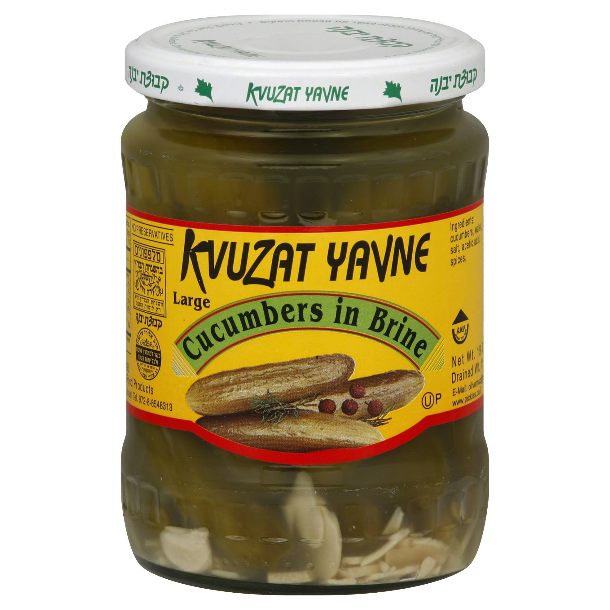 Kvuzat Yavne Cucumbers in Brine, Large - 19 oz
