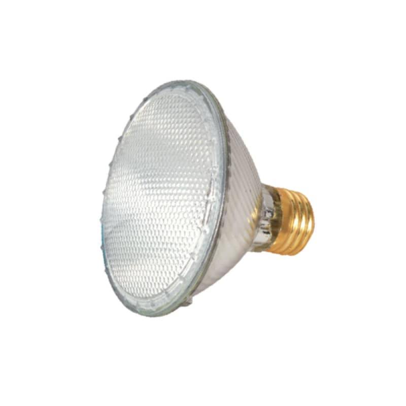 Satco Halogen Flood Lamp
