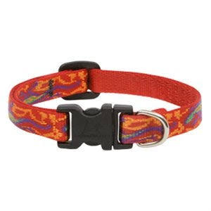 "LupinePet Originals Adjustable Small Dog Collar - Go Go Gecko, 1/2"" X 10"" to 16"""