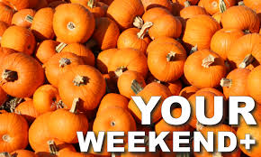 Pumpkin Fest Highwood by Your Weekend For 10 5 To 10 11 Chicago Suburban Family