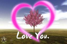 الحب images?q=tbn:ANd9GcSFxrRS-6CDc4cqXZUFl8Qs4cXDkeOce51Q6KTrNrWvhF0rt_EQZwu9OEz3cQ
