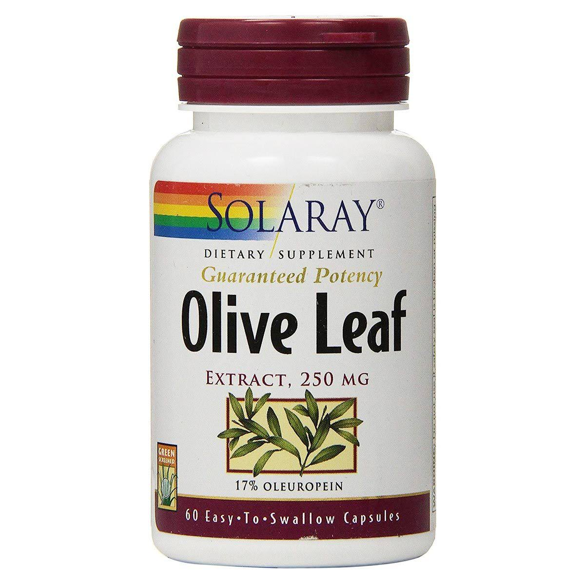 Solaray Olive Leaf Extract Supplement - 250mg, 60ct