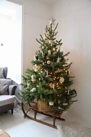 Kinds Of Christmas Trees by 25 Unique Small Christmas Trees Ideas On Pinterest Xmas Tree