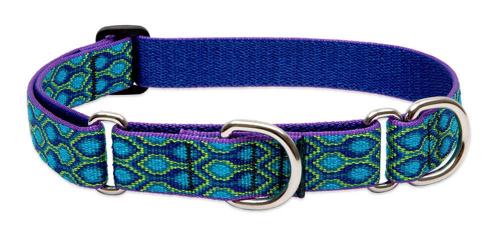 "Lupinepet Originals 1 Rain Song 15-22"" Martingale Collar - Medium and Larger Dogs"