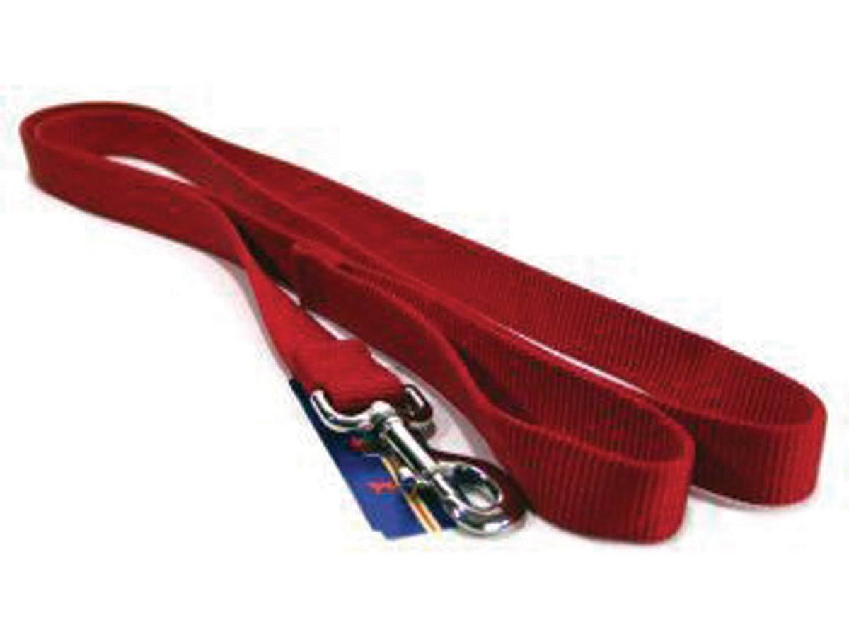Hamilton Pet Products Dog Lead - Red