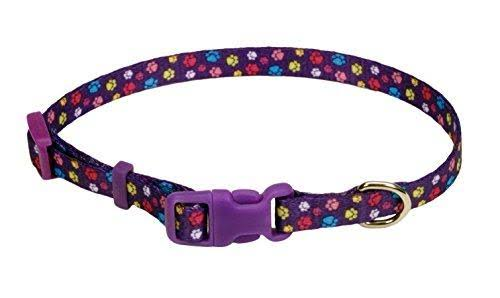Coastal Pet Products DCP6321SPW Nylon Pet Attire Adjustable Pattern Dog Collar, X-Small, Special Paw