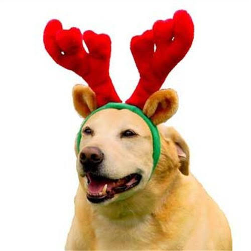 Outward Hound Kyjen Holiday Antlers Dog Accessories - Brown, Large