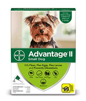 Bayer Advantage II Fleas And Lice Topical Treatment - Small Dog, 3-10 lbs