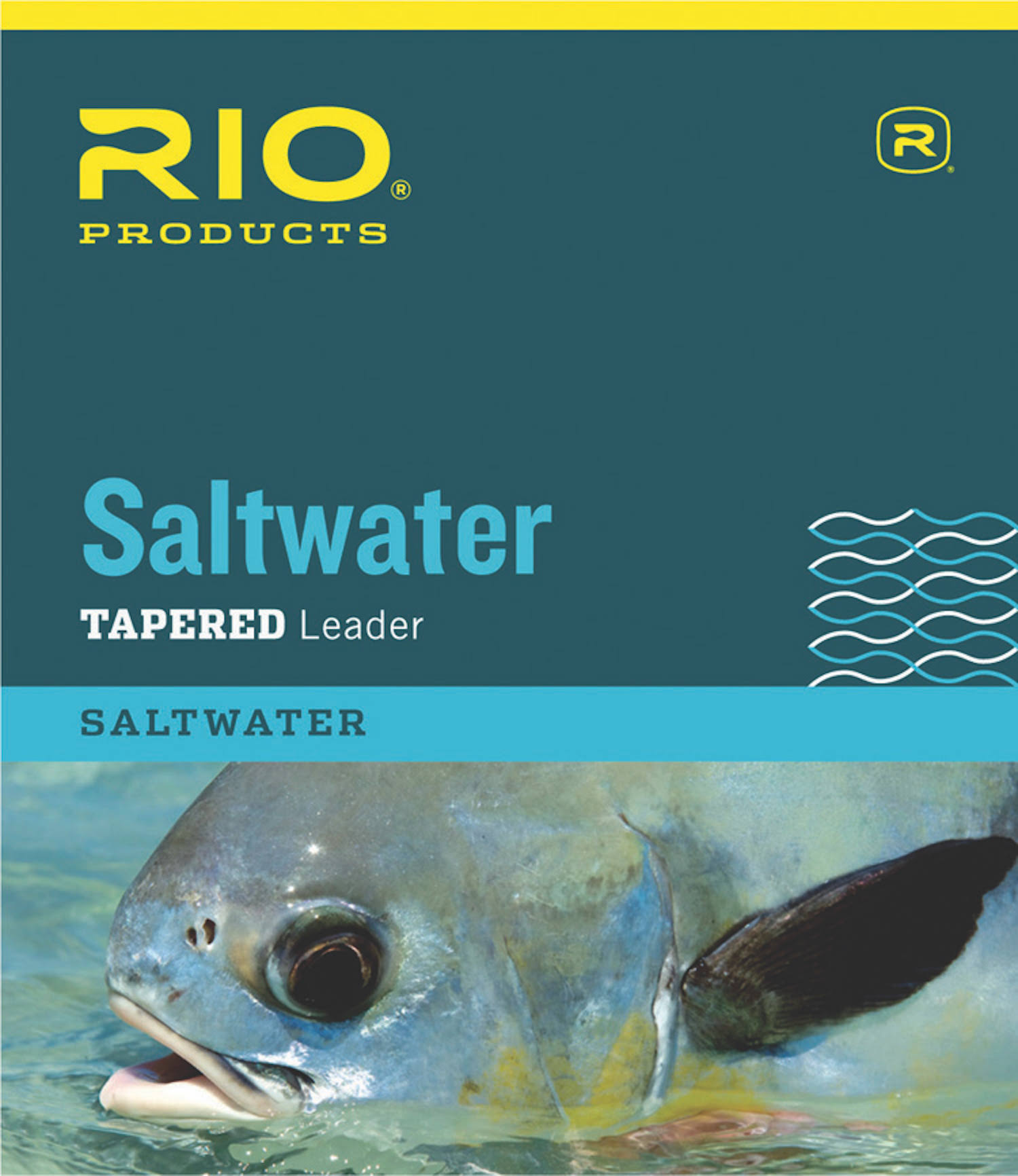 Rio Saltwater Tapered Leader - 10', 12lbs