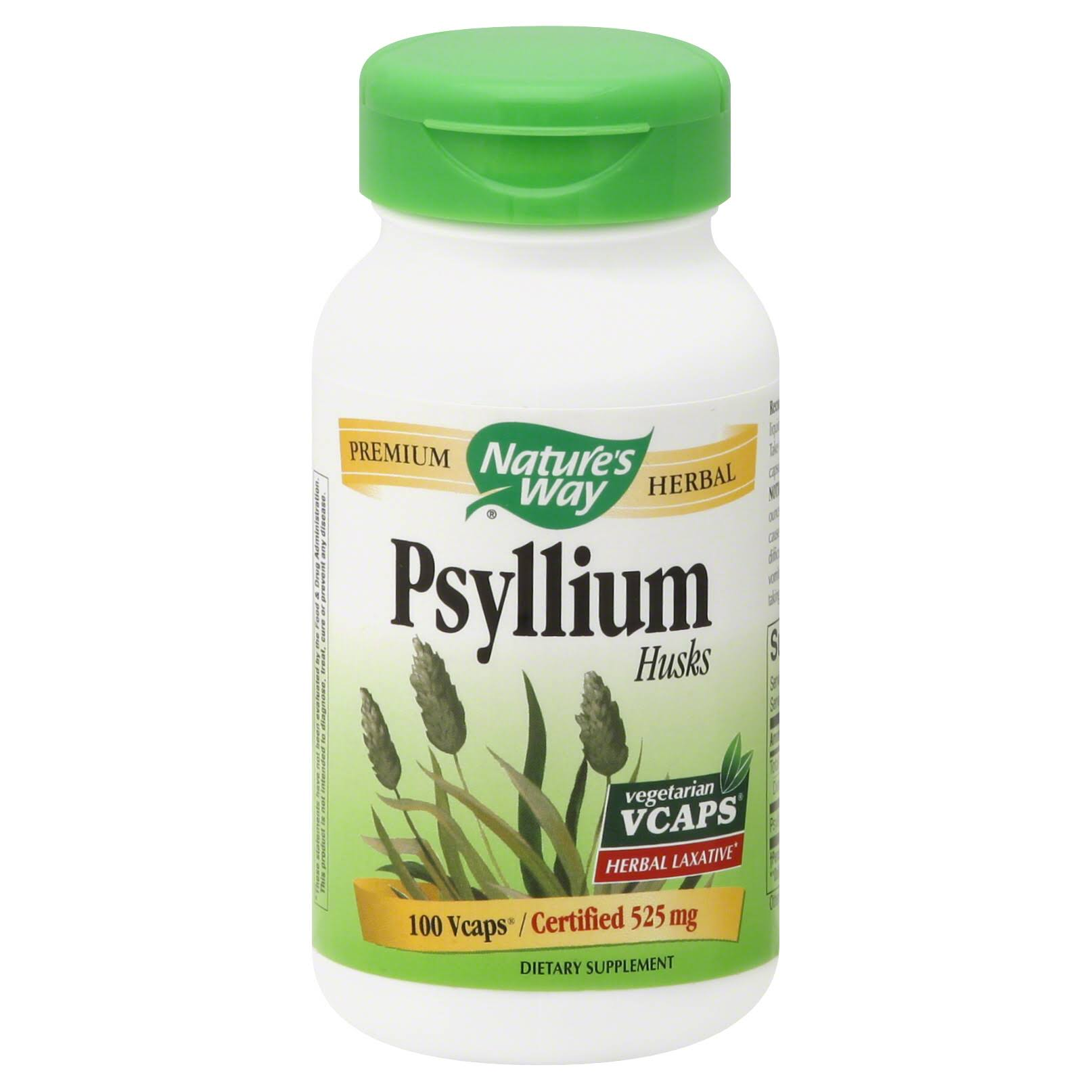 Nature's Way Psyllium Husks Supplement - 100 Capsules