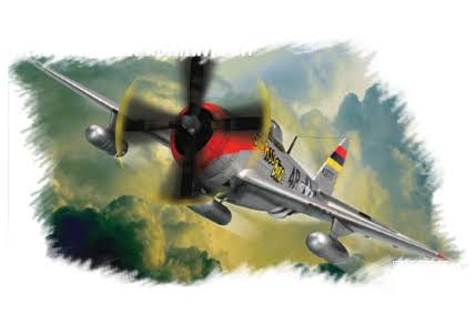 Hobby Boss P-47D Thunderbolt Airplane 1:72 Scale Model Kit