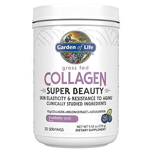 Garden of Life Grass Fed Collagen Super Beauty - Blueberry Acai