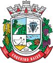 imagem de Coqueiro Baixo Rio Grande do Sul n-14