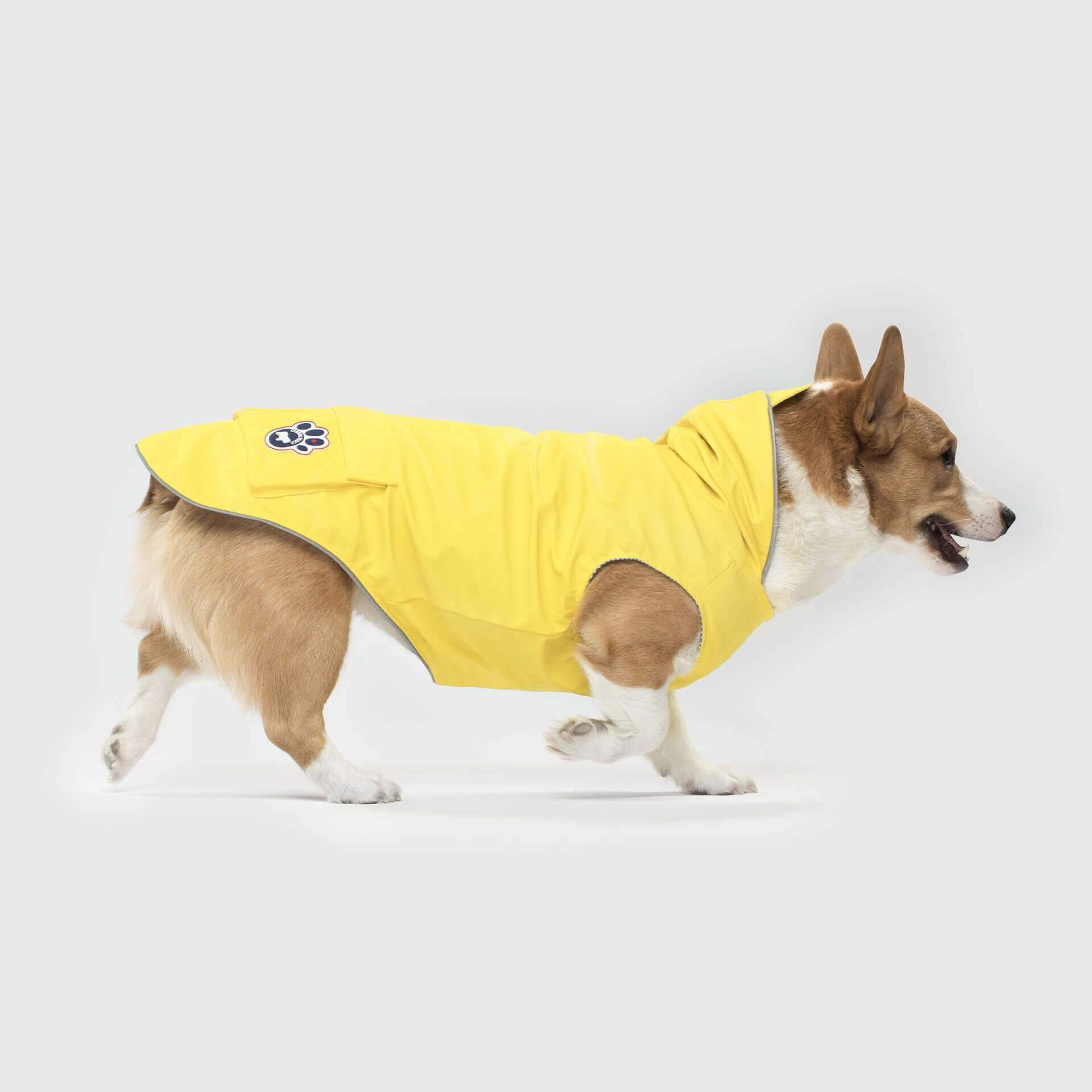 Canada Pooch Torrential Tracker Dog Coat 12 Yellow