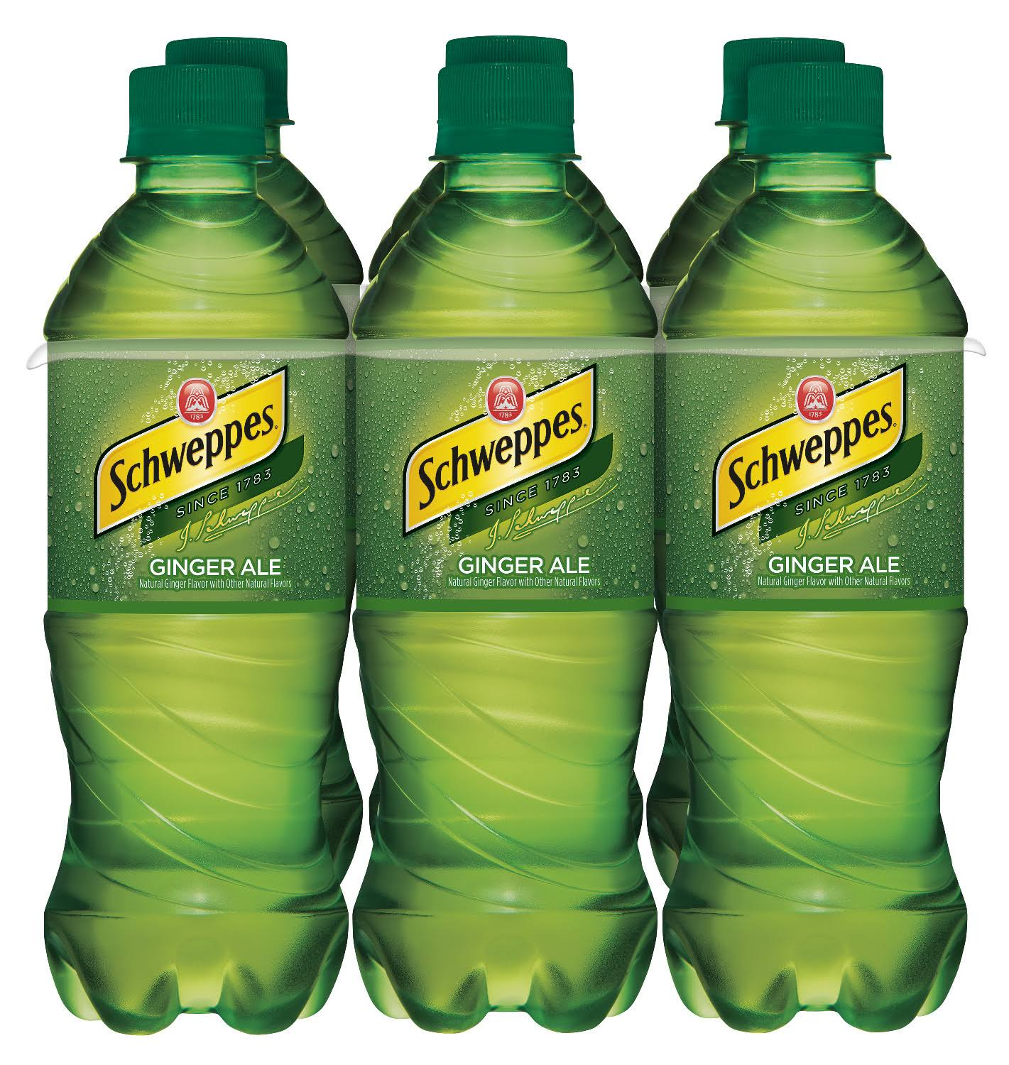 Schweppes Ginger Ale - 6 pack, 16 fl oz bottles
