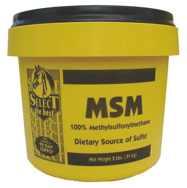 Msm Powder Joint Support for Horses - 2lbs