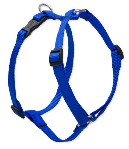 "Lupine 17568 Roman Dog Harness - Blue, 1"" x 24 - 38"""