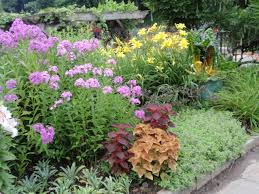Flowers For Flower Beds by Small Flower Garden Plans Garden Ideas