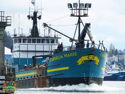 Deadliest Catch Boat Sinks Crew by Ak Commercial Fishing Boats Ak Crabbers Gillnetters Seiners
