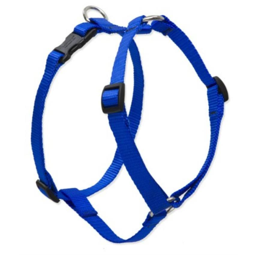 "Lupine Roman Harness for Medium Dogs - Blue, 1"" x 20-32"""