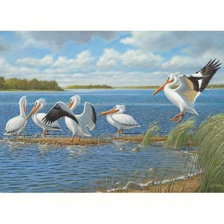 Outset Media Games Pelicans 1000-Piece Puzzle