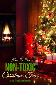 Lifelike Artificial Christmas Trees Canada by How To Find A Non Toxic Artificial Christmas Tree The Soft Landing
