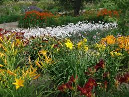 Flowers For Flower Beds by Perennial Garden Design Ideas Diy
