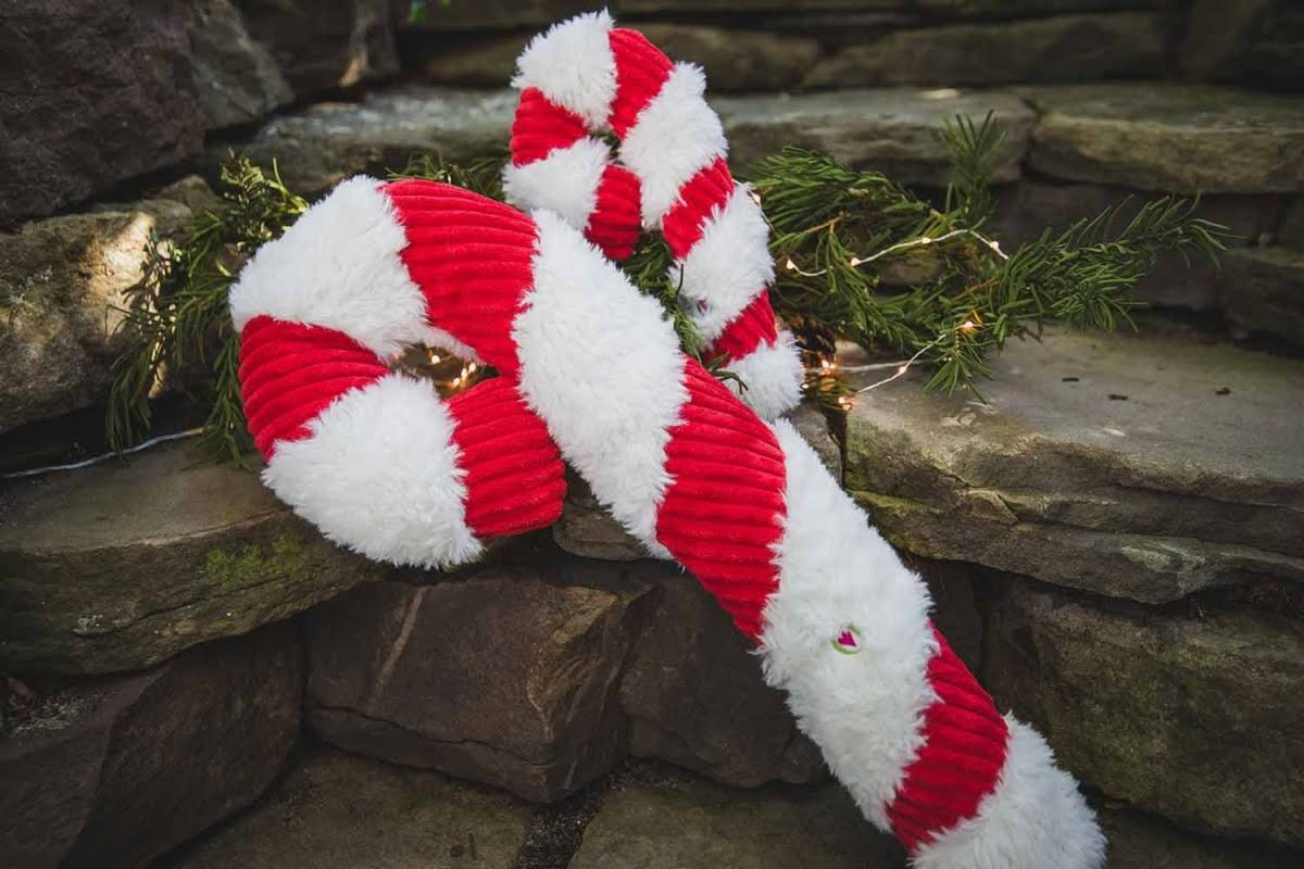 Huggle 51001940 Large Holiday Candy Cane for Dog