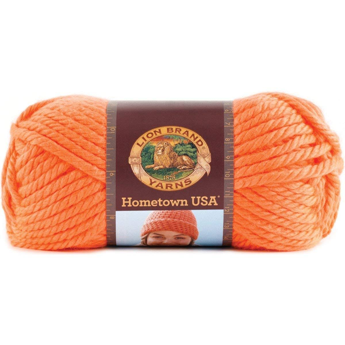 Lion Brand Hometown USA - Neon Orange (401)