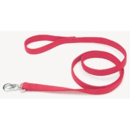 Coastal Pet Products Double-Ply Nylon Dog Leash - Red, 1 x 6ft