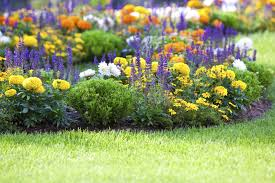 Flowers For Flower Beds by Flower Gardening How To Start A Flower Garden