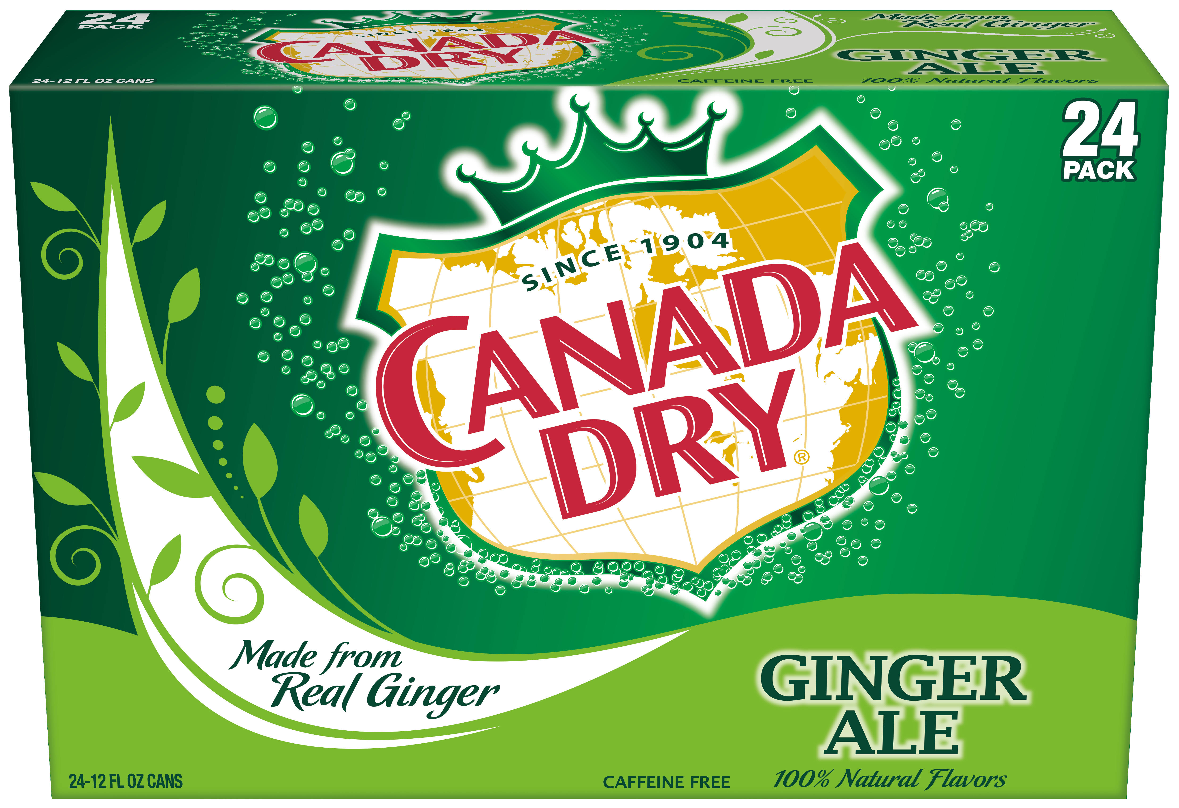 Canada Dry Ginger Ale - 24ct