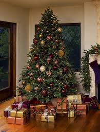 Balsam Christmas Tree Australia by Guides U0026 Ideas Cool Balsam Hill Christmas Trees For Your Holidays