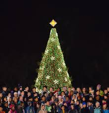 Pine Cone Christmas Trees For Sale by National Christmas Tree United States Wikipedia