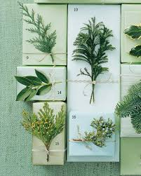 Kinds Of Christmas Trees by Holiday Greenery 101 Martha Stewart